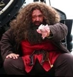 Hire Hagrid, (Harry Potter character)  Hagrid is a Kids Party magician- 90 minutes $200. which includes colorful balloon twisting. magic show and balloon twisting